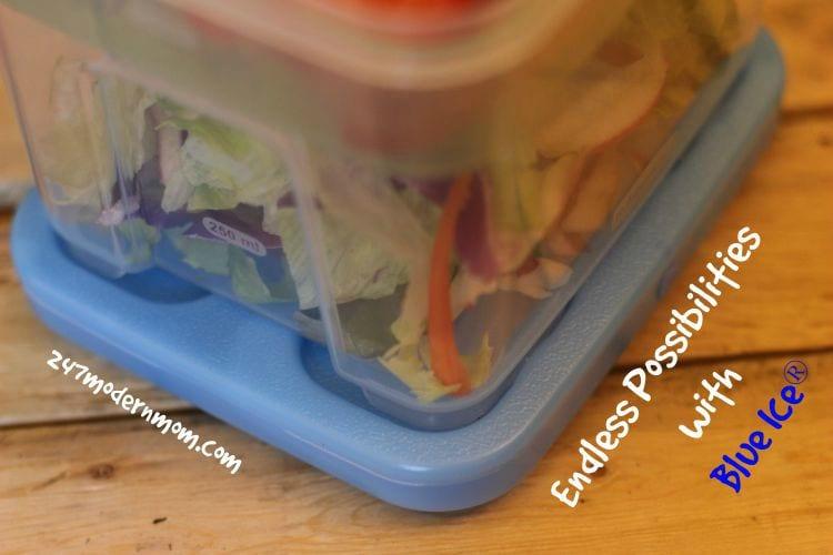 Healthy_lunch_ideas_blue_ice