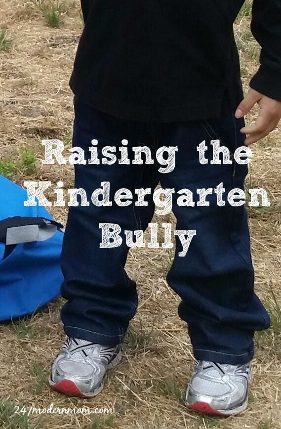 Raising_the_Kindergarten_bully