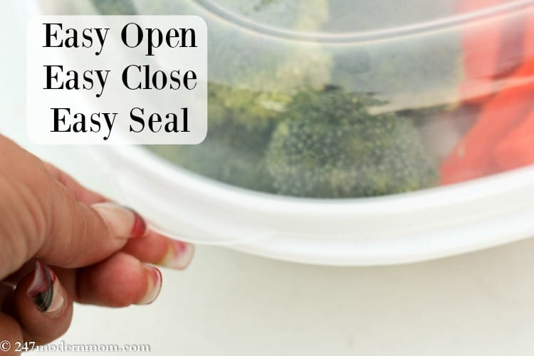rasy find lids by rubbermaid