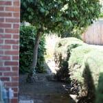 Solar Water Heating Side Yard