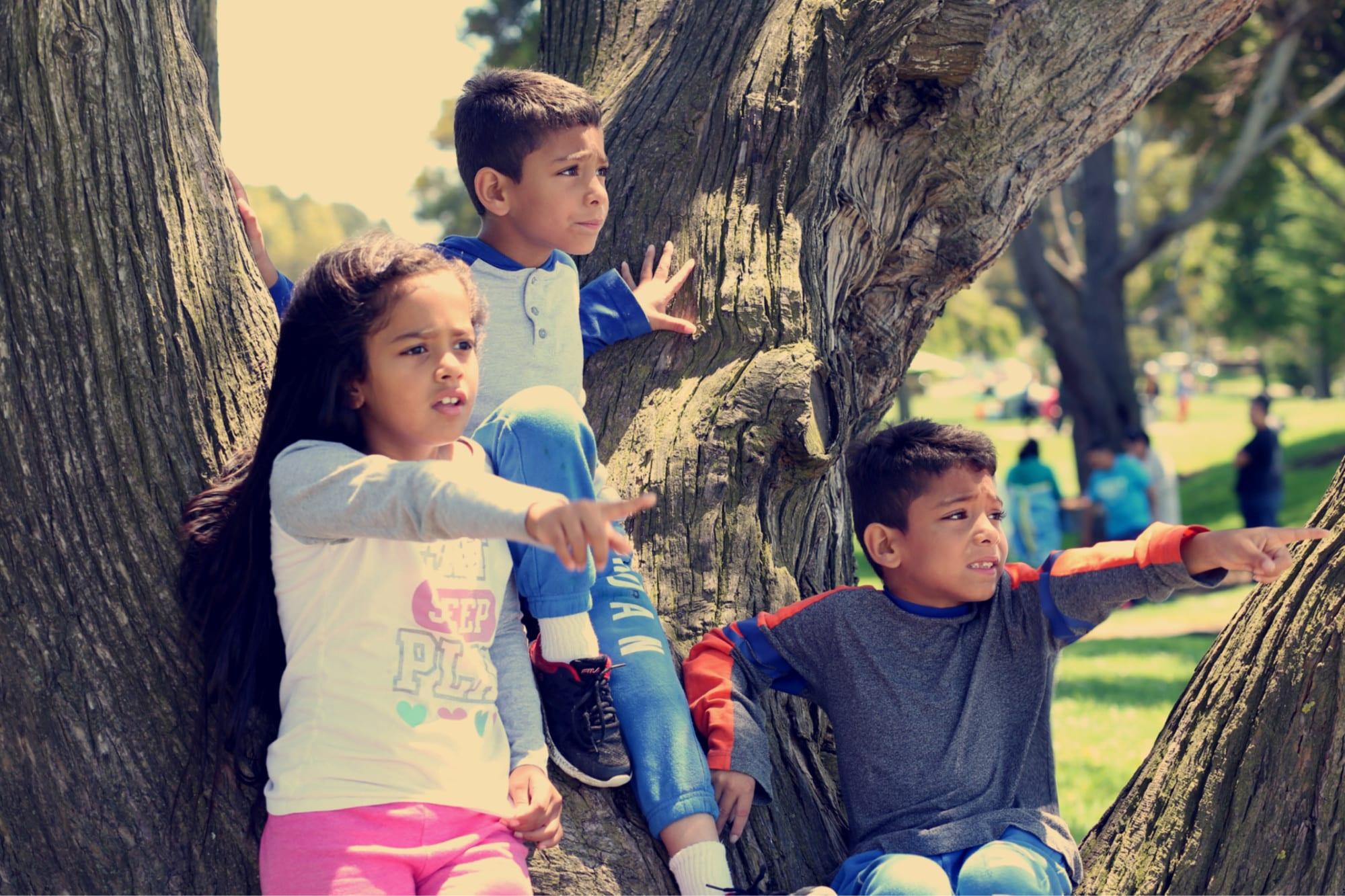 volunteer opportunities after triplets